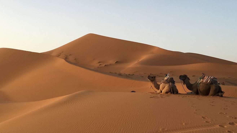 Road to Desert • Morocco Merzouga -05