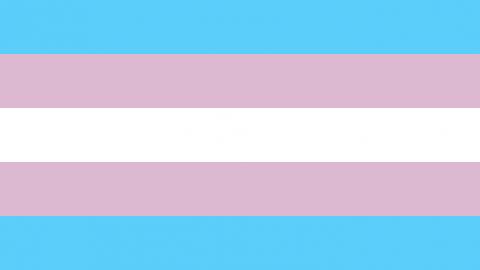flag_Transgender_Pride