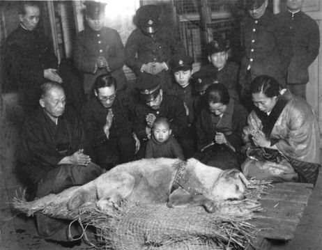 Death of Hachikō the Dog