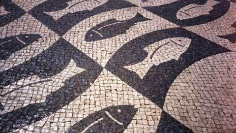 Faro Portugal Fish Pattern