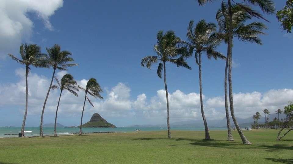 USA – Oahu 2015 -4