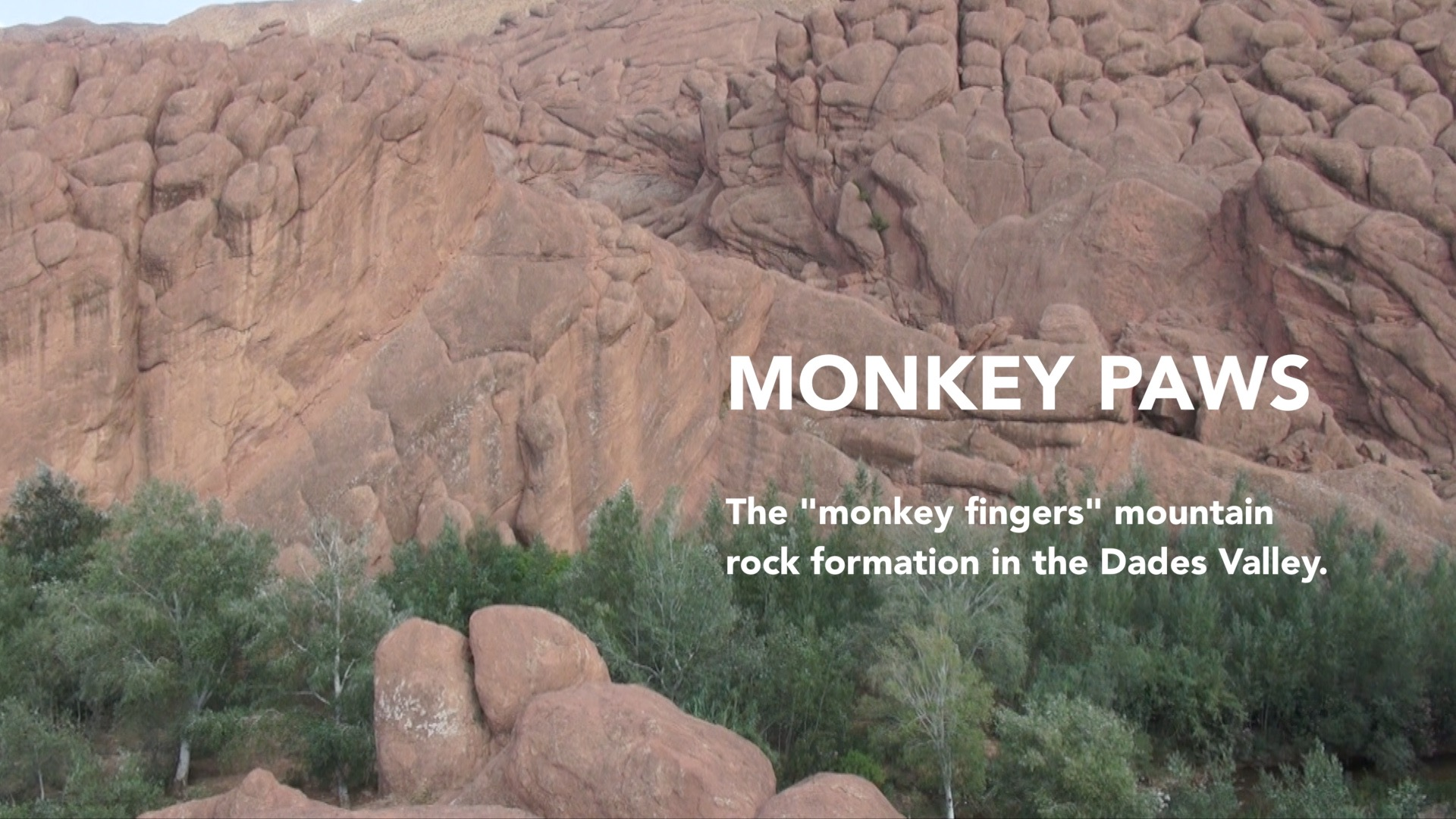 MONKEY PAWS MOUNTAINS