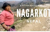 Nagarkot view of the Himalayas